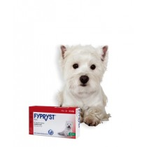 Fypryst Dog 67mg - S (2-10kg) -  3 pipete